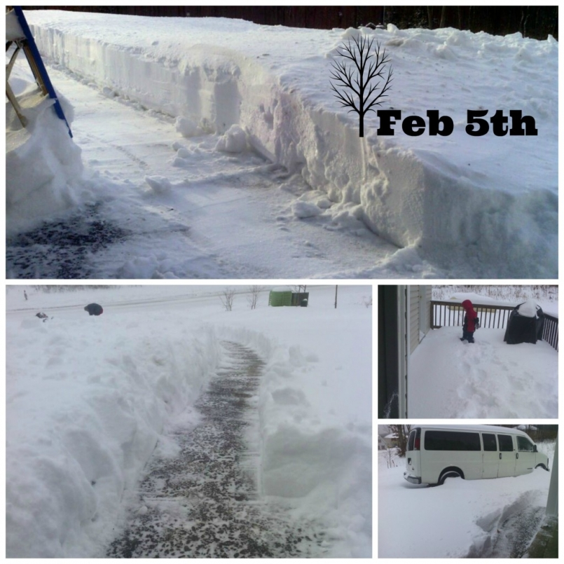 This was our house on February 5th