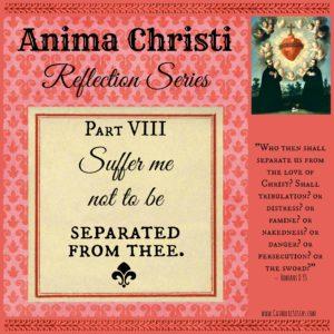 Anima Christi Sept reflection