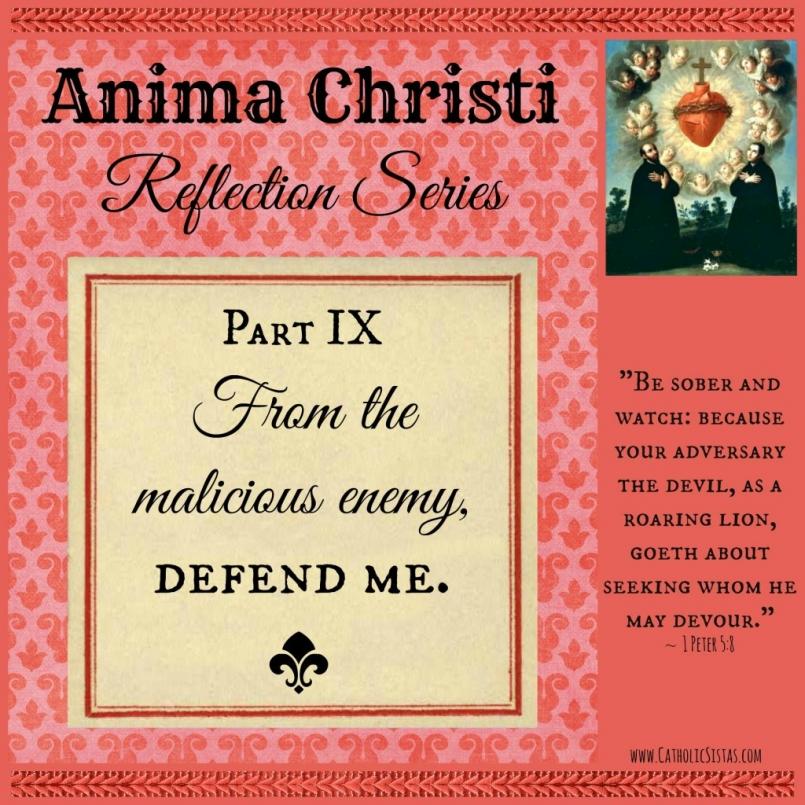Anima Christi Oct reflection