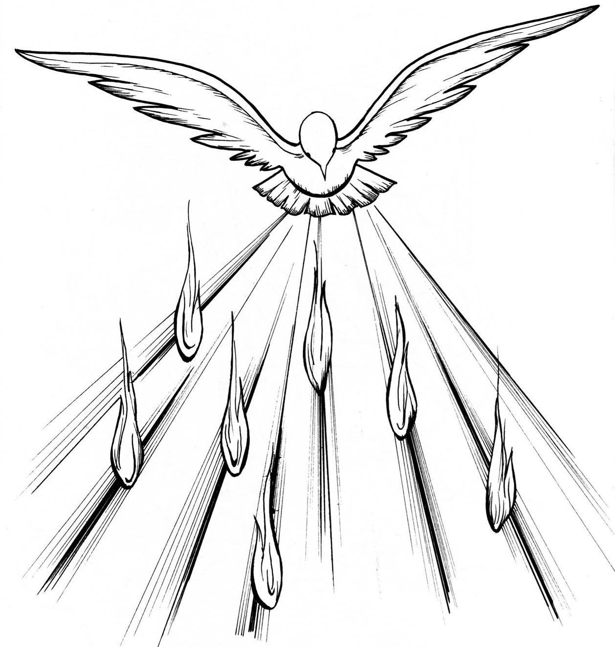 7 Quick Takes The Seven Sacraments Catholic Sistas
