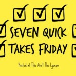 seven-quick-takes-image