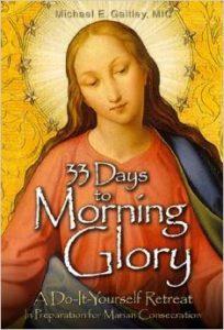 33daysof morning glory