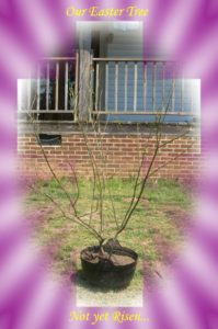 Easter tree 2006