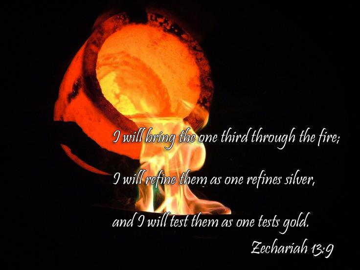 Zech Fire
