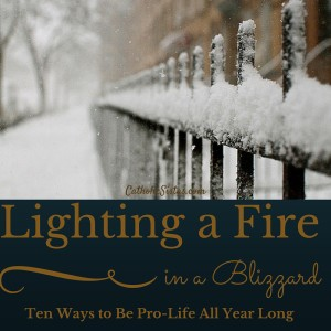 Lighting a Fire in A Blizzard