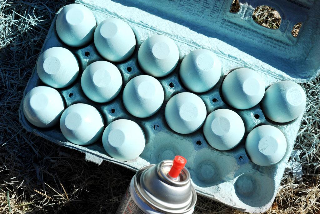 Spray Bottoms of Eggs