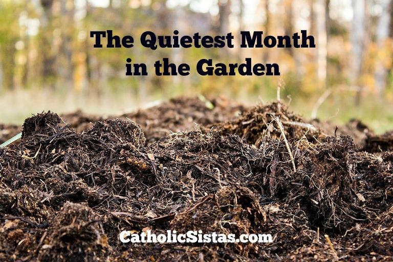 quietest month in the garden