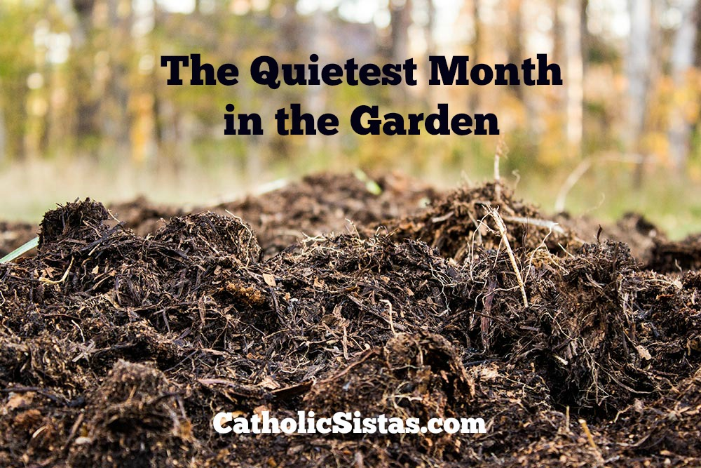 quietest month in the garden
