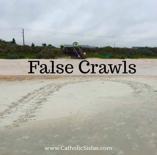 false crawl turtle tracks