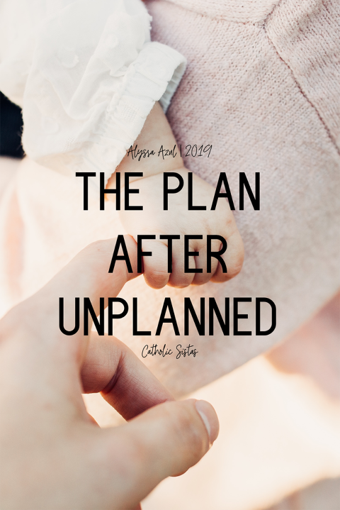 The Plan after Unplanned