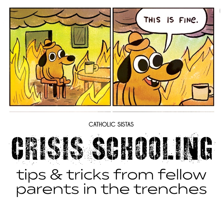 Crisis Schooling Tips and Tricks from fellow parents in the trenches